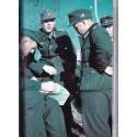Les Gebirgstruppen en couleurs 1935-1945